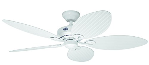Hunter 23979 54-Inch Bayview Five Blades Ceiling Fan, Wicker Palm Leaf (White)