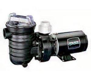 Buy best cheap sta rite jwpa5el 2a2 jwpa series pool pump for Sta rite pump motor replacement