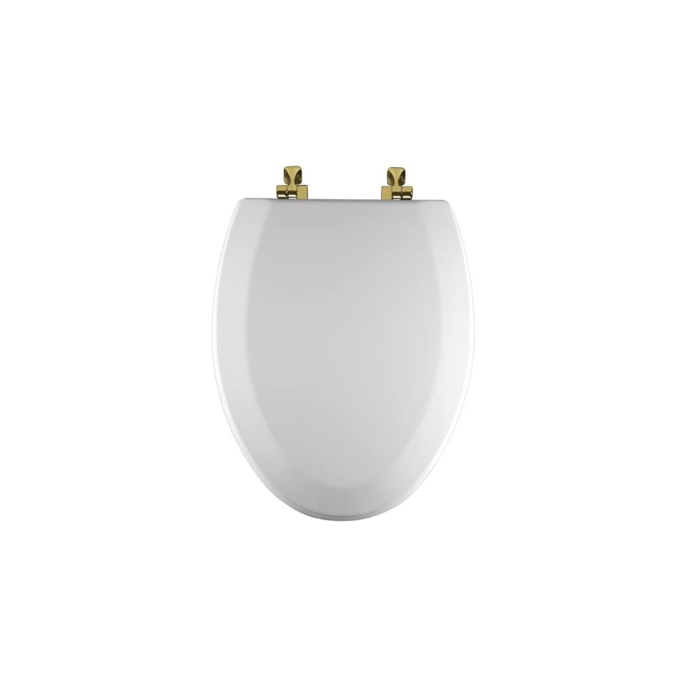 Excellent Bemis 1544Br000 Molded Wood Elongated Toilet Seat With Brass Ibusinesslaw Wood Chair Design Ideas Ibusinesslaworg