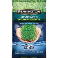 Pennington Seed 100086847 Kentucky Blue Grass Blend