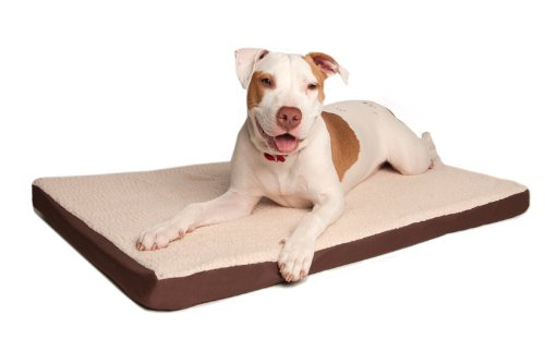 Great Paw Comfort Crate Memory Foam Dog Bed, Giant