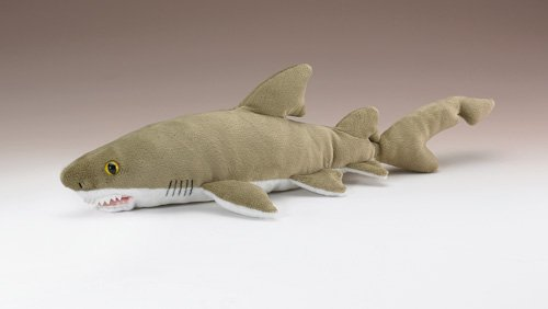 """Sand Tiger Shark 12"""" By Wild Life Artist front-764829"""