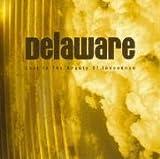 Lost In The Beauty Of Innocence Delaware
