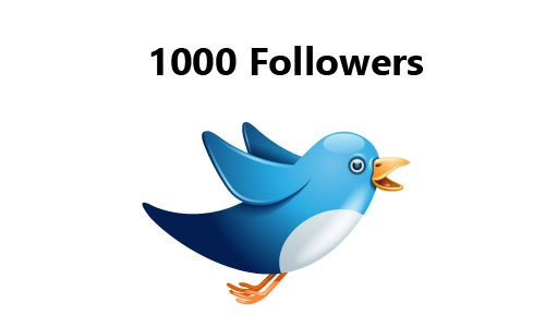 1000 Real Twitter Followers
