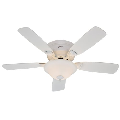 Hunter 23910 48-Inch Low Profile Plus 5-Blade Single Light Ceiling Fan, White with Bleached Oak/White Blades and Frosted Glass Bowl