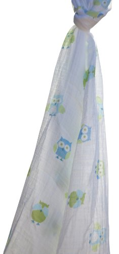 Angel Dear Swaddle Blanket, Owl front-753774