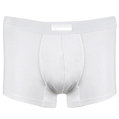 ermenegildo-zegna-boxer-homme-blanc-blanc-blanc-large