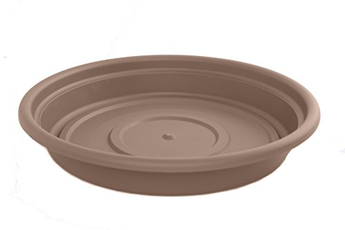 Bloem SDC4-18 Dura Cotta Plant Saucer, 4-Inch, Curated
