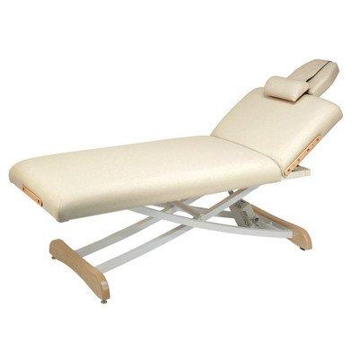 Elegance Lift Back Electric Massage Table Color: Burgundy