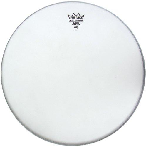 remo-banjo-head-11inch-white