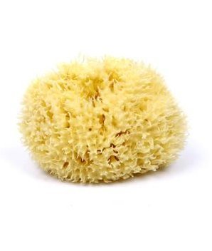 babys-best-natural-sea-sponge-the-worlds-best-sea-sponge-from-the-mediterranean-sea