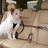 Kurgo Pet Travel Canine Auto Zip Line with Harness extra large dogs over 80-lbs.