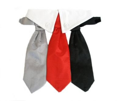 Satin Dog Wedding Necktie Collar Set w/ 3 Ties, Large (Neck 16-19