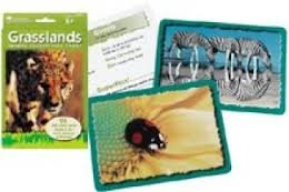 Learning Resources Animal Classifying Cards, Grasslands - 1