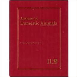 anatomy of domestic animals pasquini free download