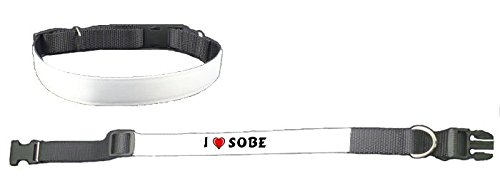 personalised-dog-collar-with-i-love-sobe-first-name-surname-nickname