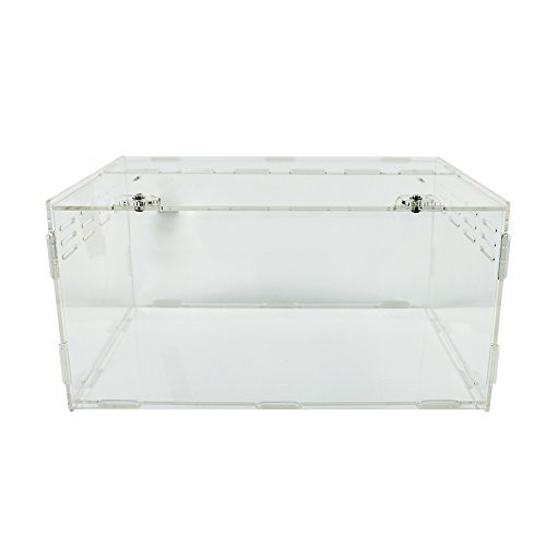 Happy Pet Acrylic Reptile Terrarium Habitat, Ideal for Larvae spiders, ants, scorpions, and other small reptiles, 30 * 20 * 15 cm, transparent (Tortoise Table compare prices)