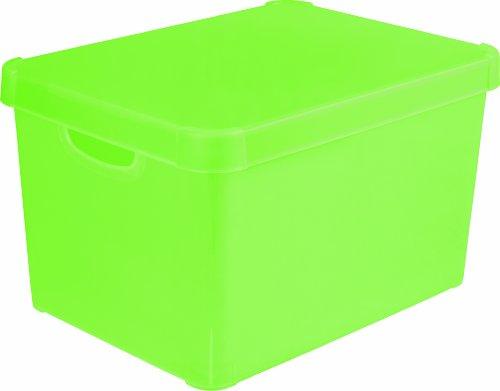 Stockholm 213232 Dekorative Box, Polypropylen, durchsichtig, groß, Grün