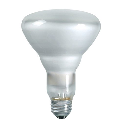 Philips 139279 Soft White 65-Watt BR40 Indoor Flood Light Bulb, 2-Pack (Kitchen Light Bulbs compare prices)