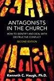 img - for Antagonists in the Church book / textbook / text book