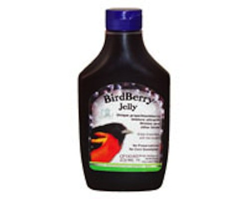 Make Butterfly Feeder front-1035642