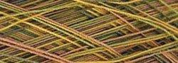 Yli Machine Quilting Thread 2735 Yards Green To Tan