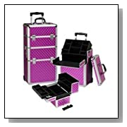 Professional Rolling Makeup Case 29