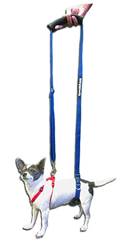 Toys For Stroke Recovery : Gingerlead dog support rehabilitation harness mini