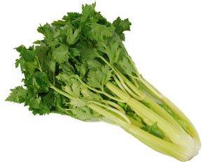 セロリはおすすめのマイナスカロリー食品