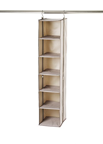Neatfreak! Greystone 6-Shelf Organizer (Neatfreak Closet Organizer compare prices)