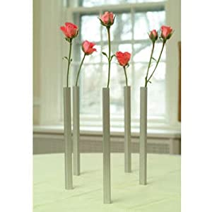 DCI Magnetic Bud Vases, Set of 5