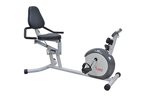 Sunny Health & Fitness SF-RB4601 Recumbent Bike, Grey