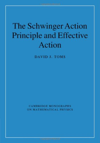 The Schwinger Action Principle and Effective Action (Cambridge Monographs on Mathematical Physics)