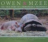 Amazing True Story of Owen and MZee