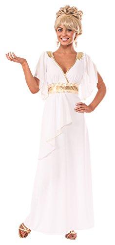 Rubie's Costume Women's Grecian Adult Costume Dress, Multi, Small