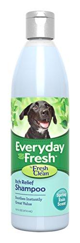 fresh-n-reinigen-everyday-fresh-itch-relief-shampoo-16-oz