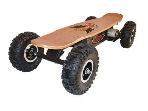 EMAD Dirt Rider 800 W electric skateboard