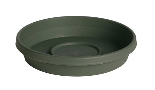 Fiskars TerraTray for 10 Inch TerraPot, Thyme Green (10 Pot Saucer compare prices)
