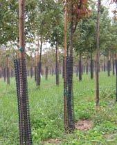 A.M. Leonard BG36 Tree Bark Protectors, 36 Inch, 5-Pack