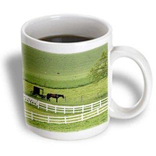 Amish Coffee Table