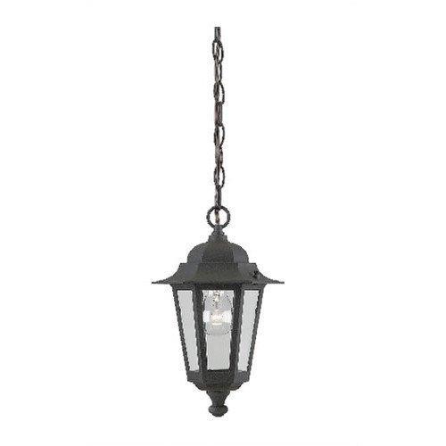 Westinghouse Lighting 1 Light Hanging Lantern