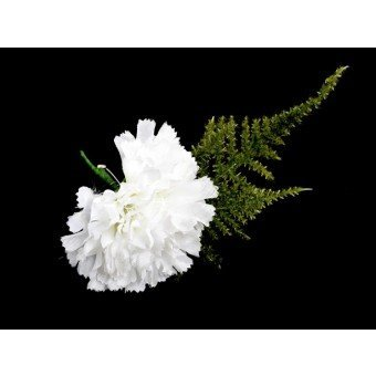 Wedding Corsage White Carnation