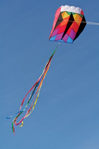 Into The Wind Parafoil 5 Kite