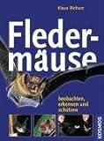 Fledermäuse: Beobachten, erkennen und schützen