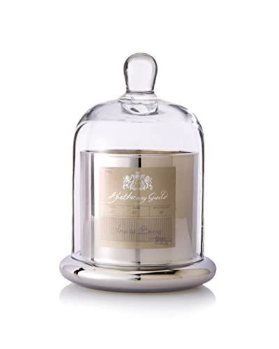 Apothecary Guild Snow Berry Scented 9.7-Oz. Candle with Glass Dome, Silver