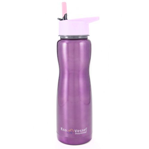 Eco Vessel Summit Discontinued 2014 Insulated Stainless Steel Water Bottle with Flip Straw (17-Ounce, Purple Glow)