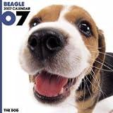 THE DOG ビーグル 2007年 カレンダー