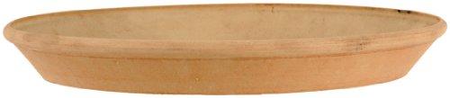Arcadia PSW AP30TC Single Slip Saucer, 12-Inch, Terra Cotta