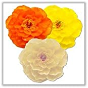 Peony Floating Candles Ivory, Orange, Yellow Boxed (Set Of 3)