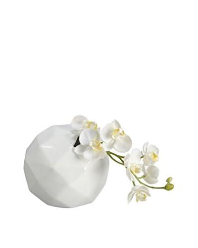 Korb Jarrón Blanco Brillante